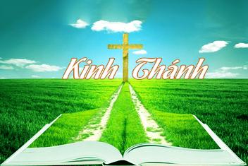 Kinh Thánh Bản Dịch 2005
